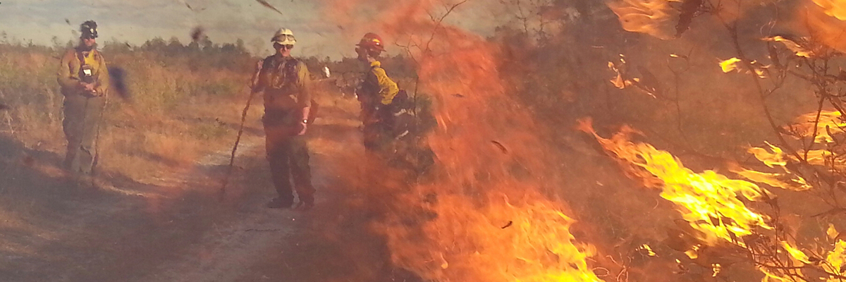 three fire fighters in gear with fire in foreground
