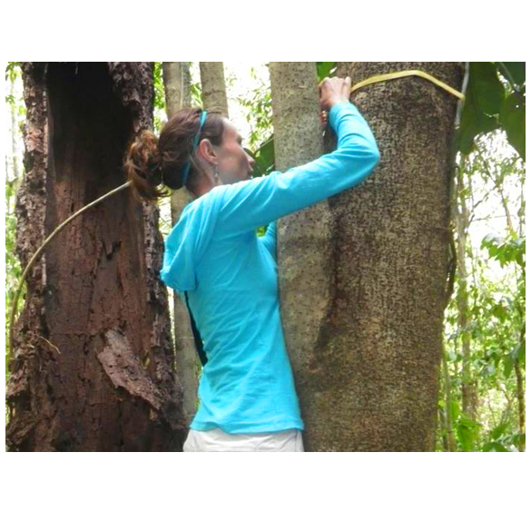 Female student measuring tree's circumference