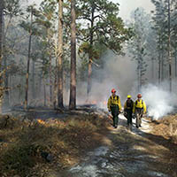 Prescribed Fire Practicum at the University of Montana